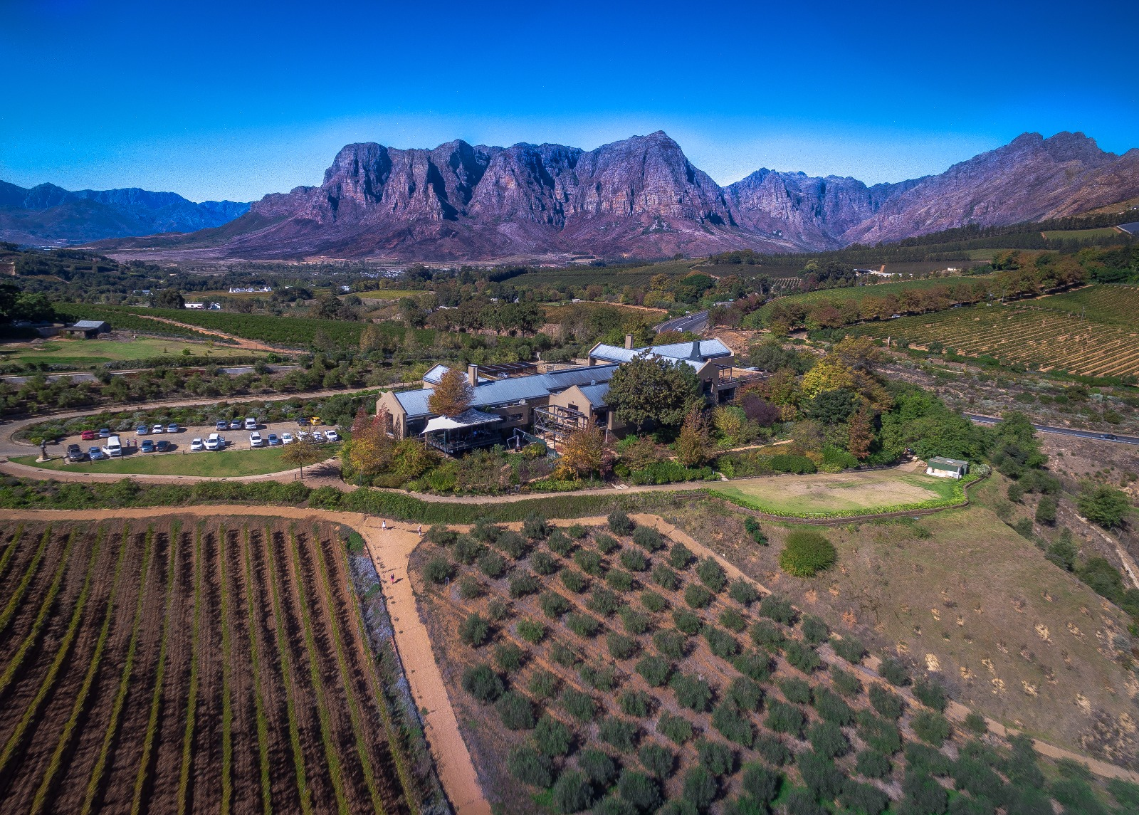Tokara | Get in my Belly 9